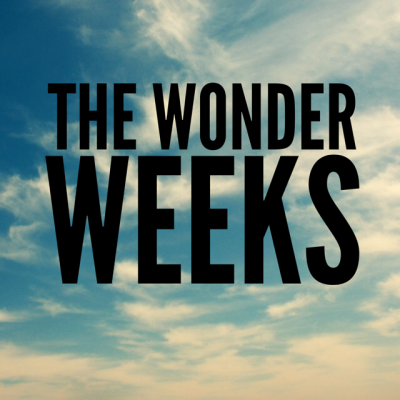 The Wonder Weeks – Mental Leaps and Predictable Fussy Periods