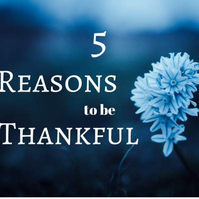 There are so many reasons to be thankful this season. Take the time to say thank you to your loved ones and show your gratitude.