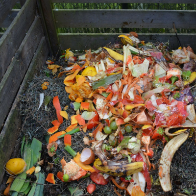 Easy Tips for Composting with Kids